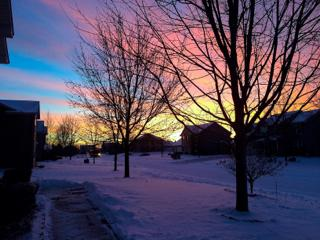 A Minnesota winter morning. Photo by: Katie Harff