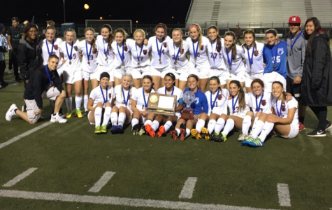 North girls' soccer celebrates after winning the section championship and advancing to the state tournament.